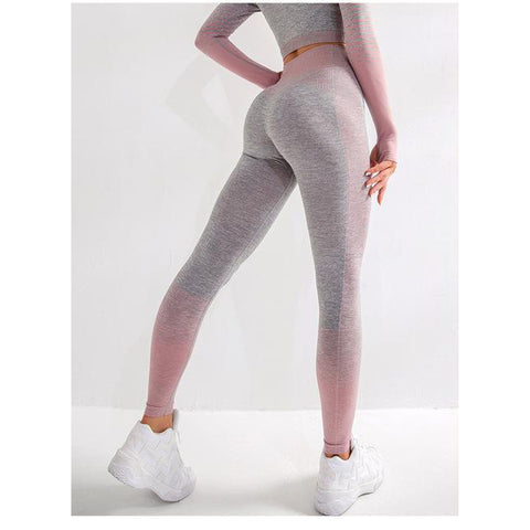 Women Seamless Leggings Sexy Clothes Workout Leggings Fitness Comfort Pants - UDO FITNESS