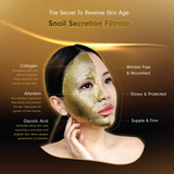 MEIN-V Snail Secretion Filtrate Gold Snail Anti-Aging Silk Mask. Premium Salon Grade Sheet Mask in SIngapore.