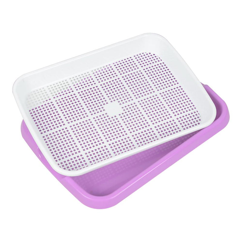 Double-layer Seed Sprouter Tray - Smart Shop Way