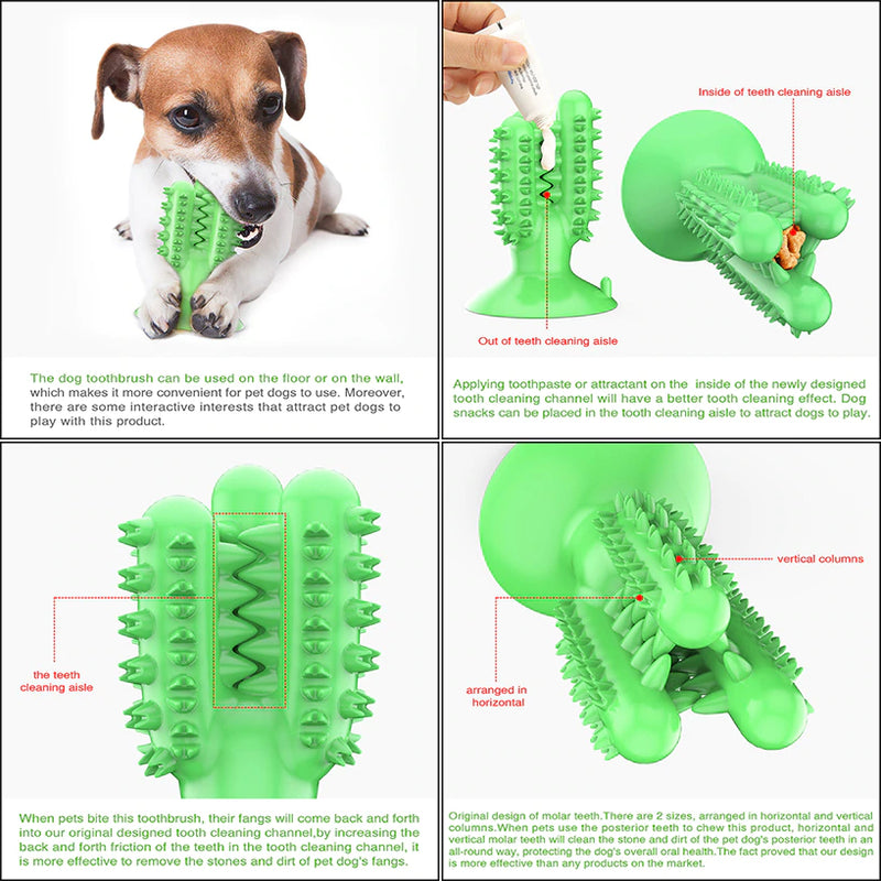 Cactus Dog Toothbrush - Smart Shop Way