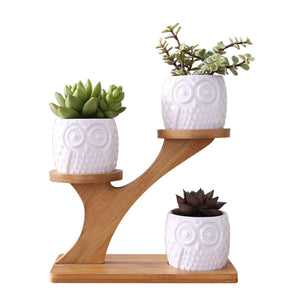 3-Tier Bamboo Tree Stand with Owl-Shaped Succulent Planters