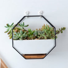 Load image into Gallery viewer, Geometric Metal Iron Rack White Ceramic Hanging Wall Planter