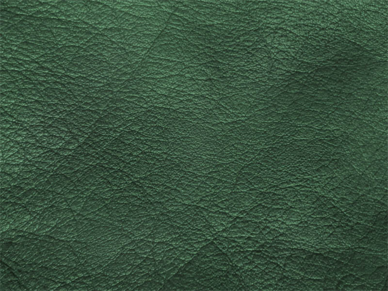 Tilcara Wallet – Forest Green