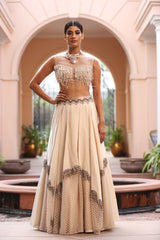 ivory-feather-embroidered-blouse-with-layered-skirt