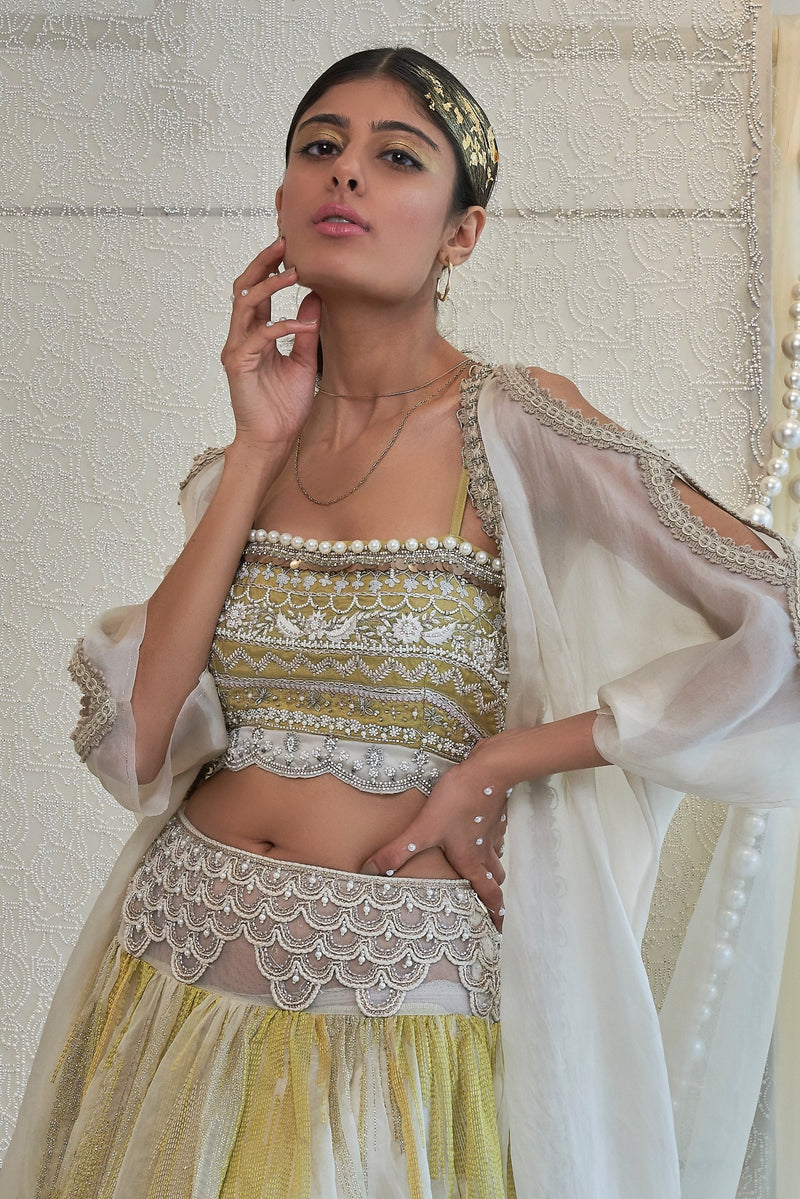 citric-linear-embroidered-lehenga