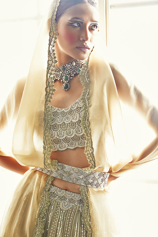 the-wedding-tribe-embroidered-lehenga-2