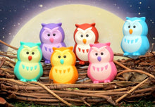 Load image into Gallery viewer, 380061 IWAKO OWL ERASERS-6 COLORS-30