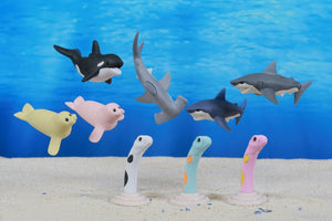 381821 IWAKO SEA ANIMALS 2 ERASERS-30