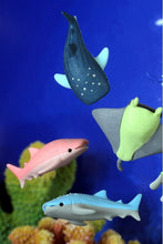 Load image into Gallery viewer, 38253 IWAKO WHALE SHARK ERASERS-60