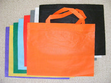 Load image into Gallery viewer, 60060 ECO-FRIENDLY SHOPPING BAGS-16