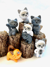 Load image into Gallery viewer, 70705 ANGRY CATS FIGURINES-24