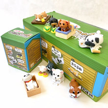 Load image into Gallery viewer, 70713 Playful Dog Blind Box-8
