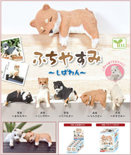 Load image into Gallery viewer, 70716 SHIBA INU HANGING DOG BLIND BOX-10