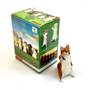 70733 SALUTING DOGS BLIND BOX-10