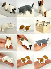 Load image into Gallery viewer, 70738 PLAYFUL HANGING CAT BLIND BOX-10