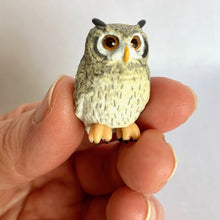 Load image into Gallery viewer, 70811 OWL CAPSULE-6