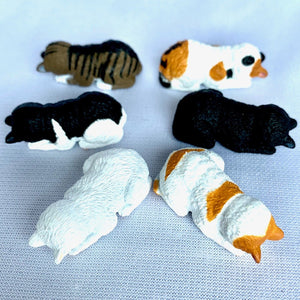 70813 SLEEPING CAT CAPSULE-6