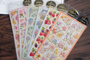 77813 Pluie Douce Gentle rain-Assorted-12