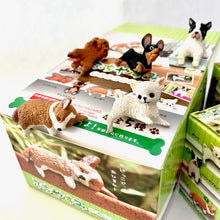Load image into Gallery viewer, 70727 PLAYFUL HANGING DOGS BLIND BOX-10