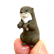 Load image into Gallery viewer, 70810 OTTER CAPSULE-8