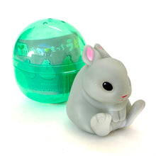 Load image into Gallery viewer, 70808 SOFT BUNNY CAPSULE-6