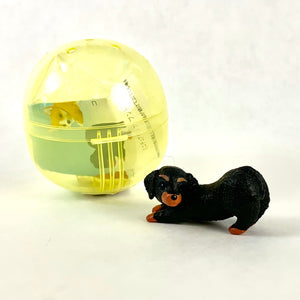 70829 TURNING DOG CAPSULE-6
