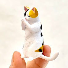Load image into Gallery viewer, 70721 WISHING ANIMALS Vol.1 Blind Box-10