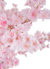 Load image into Gallery viewer, Spring Cherry Blossom Branches
