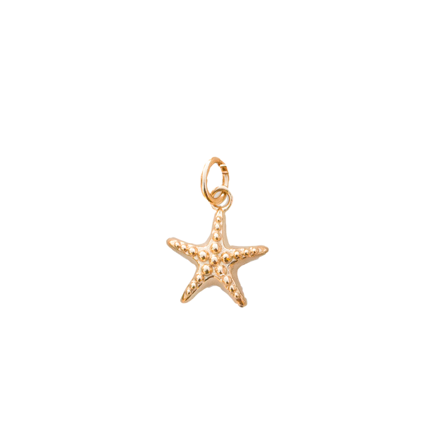 925 Collectable Charm Gold Plated Starfish - PENDANT - [variant.title]- Borboleta
