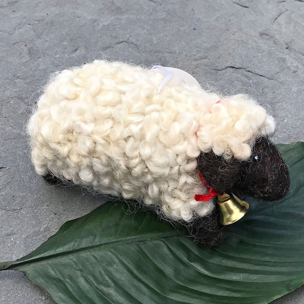 Shiloh the Sheep, Guatemala