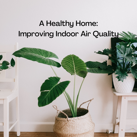 Healthy Home Improving Indoor Air Quality
