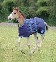 Shires Highlander Foal Blanket
