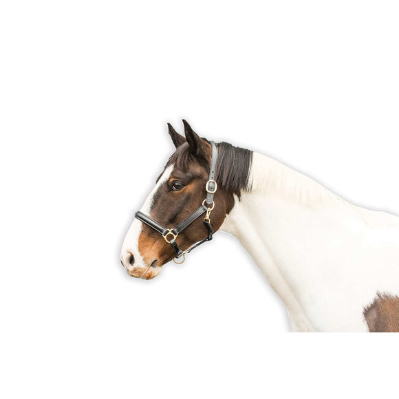 Loveson  Leather Stable Halter