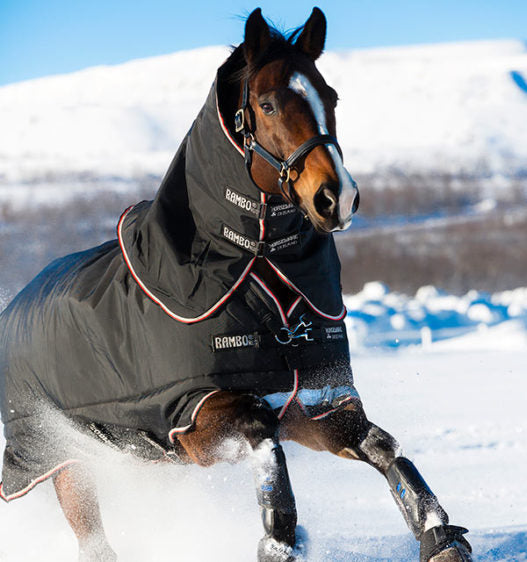 Rambo Supreme Turn Out Winter Horse Blanket 420 gram