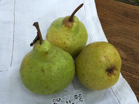 New Season UK Organic Pears