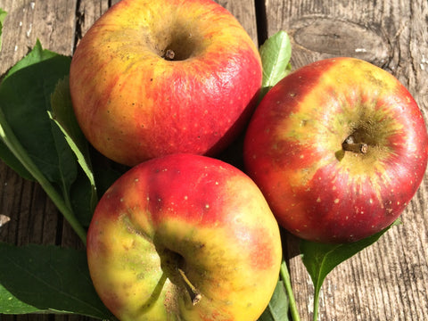 New Season UK Organic Unwaxed Apples