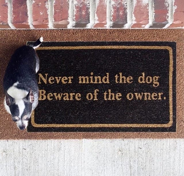 Never mind the Dog Front Door Mat