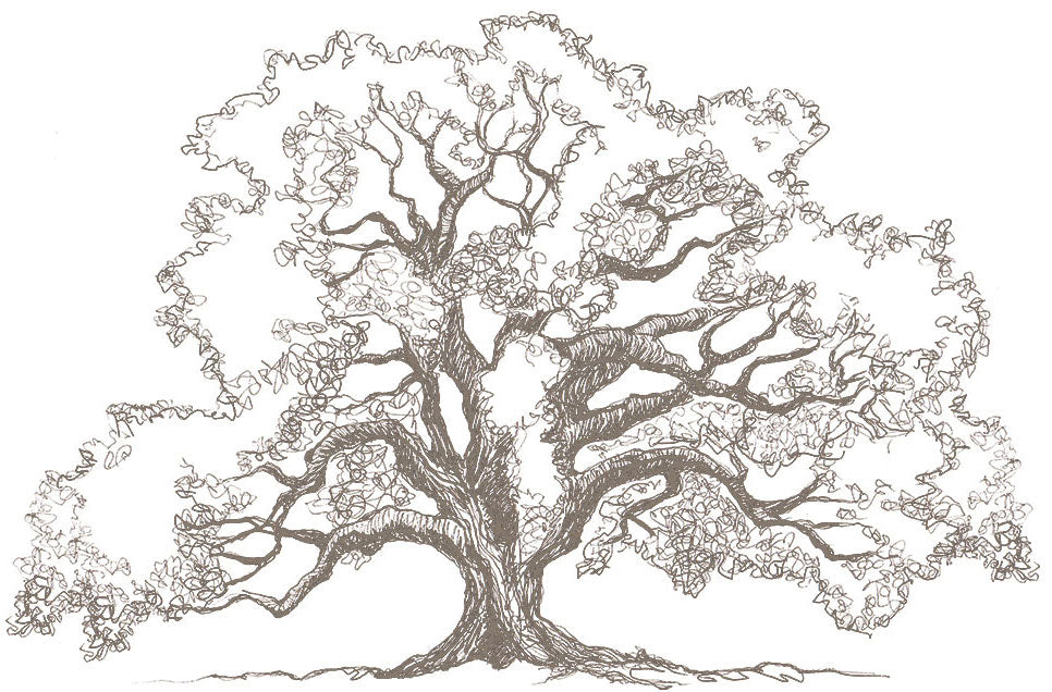 "The Sketch Book tagged ""tree"" 