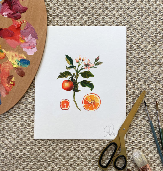 Botanical Print: Orange Blossom