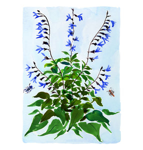Large Botanical Print: Salvia on Blue
