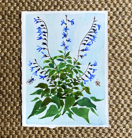 Blue & Black Salvia on Blue
