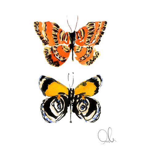 Botanical Print: Butterfly II
