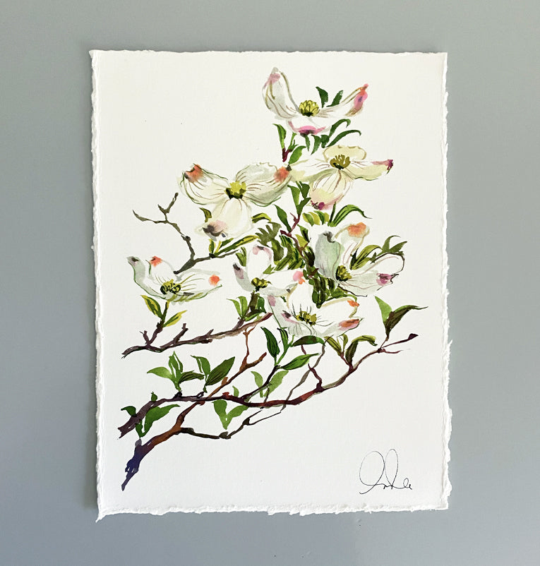 Botanical Original: Dogwood