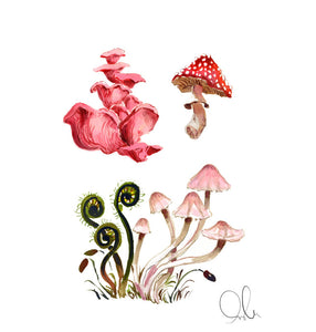 Botanical Print: Fungi & Fiddlehead