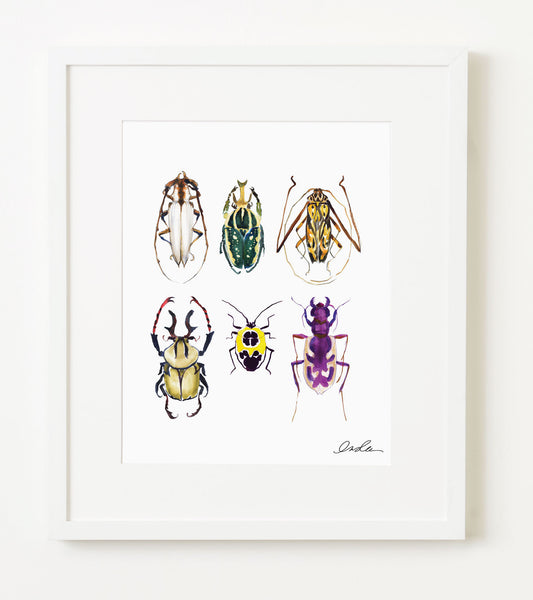 Insects Two Print