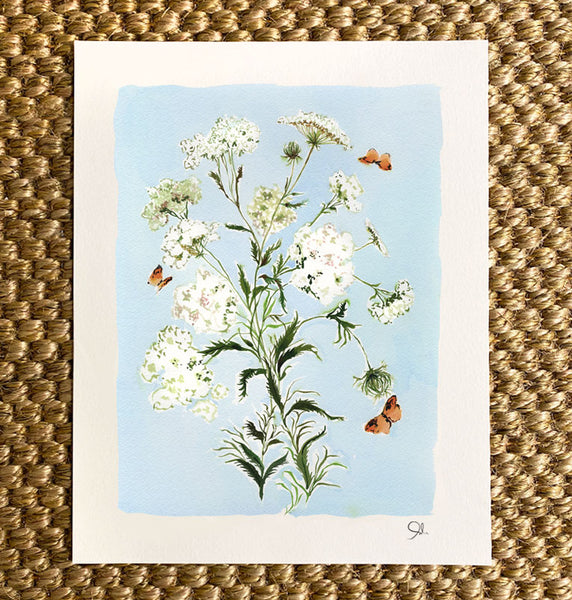 Large Botanical Print: Queen Anne's Lace on Blue