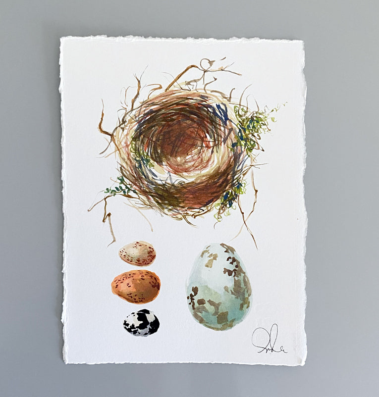 Botanical Original: Nest