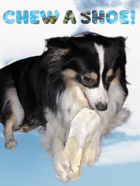 Pack of 10 or 20 Shoe Rawhides
