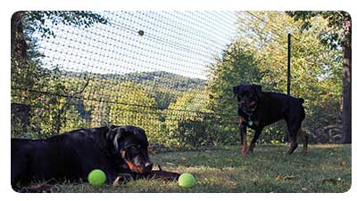 How To Build An Affordable Community Dog Park Diy Dog Fences And