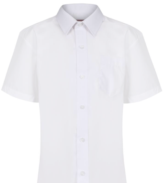 Boys Short Sleeve Shirt - 2 in a PACK (NON-IRON)